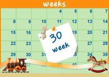 30η Εβδομάδα
