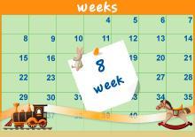 8η Εβδομάδα