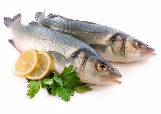 Πρέπει τα παιδιά να καταναλώνουν ψάρια;