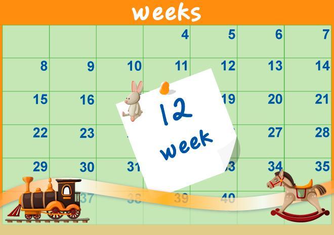 12η Εβδομάδα