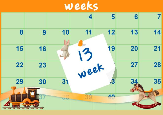 13η Εβδομάδα