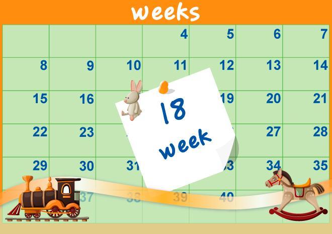 18η Εβδομάδα